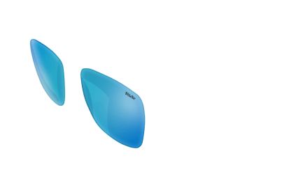 Switch Sunglasses Blue chrome Lenses